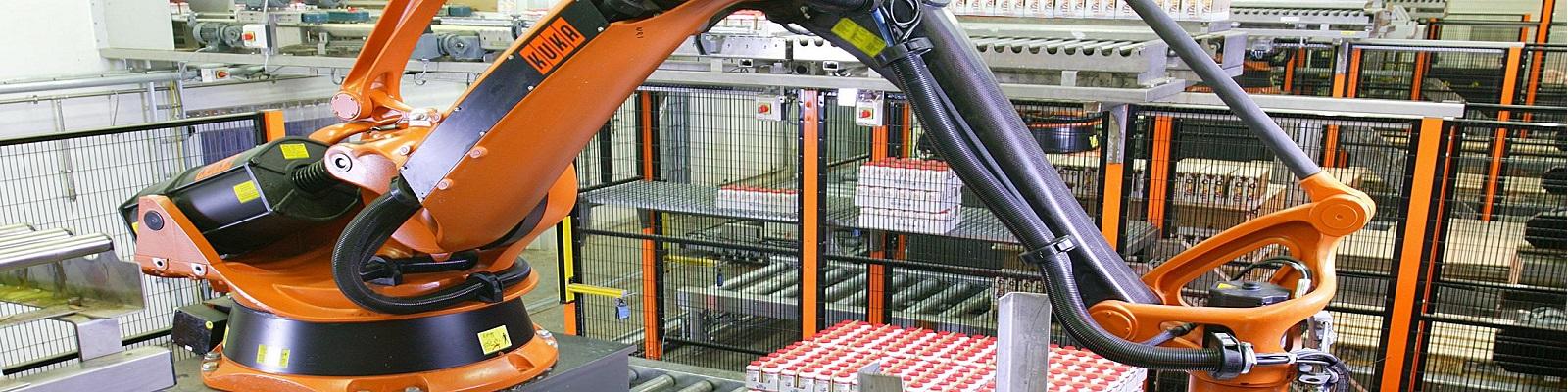 Valutazione dei rischi per postazioni robotizzate